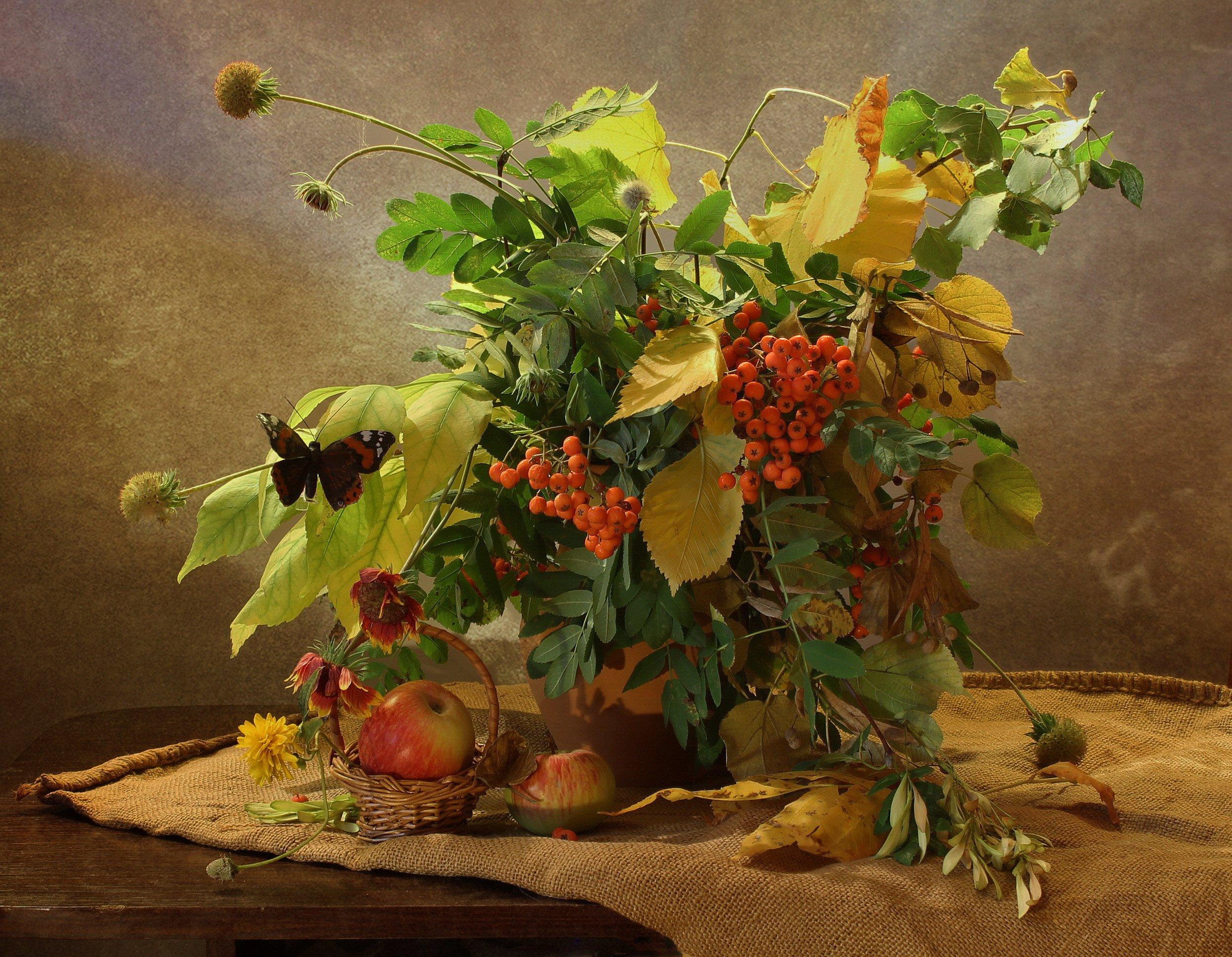 натюрморт, осень, сентябрь, цветы, листья, рябина, яблоки, Ковалева Светлана