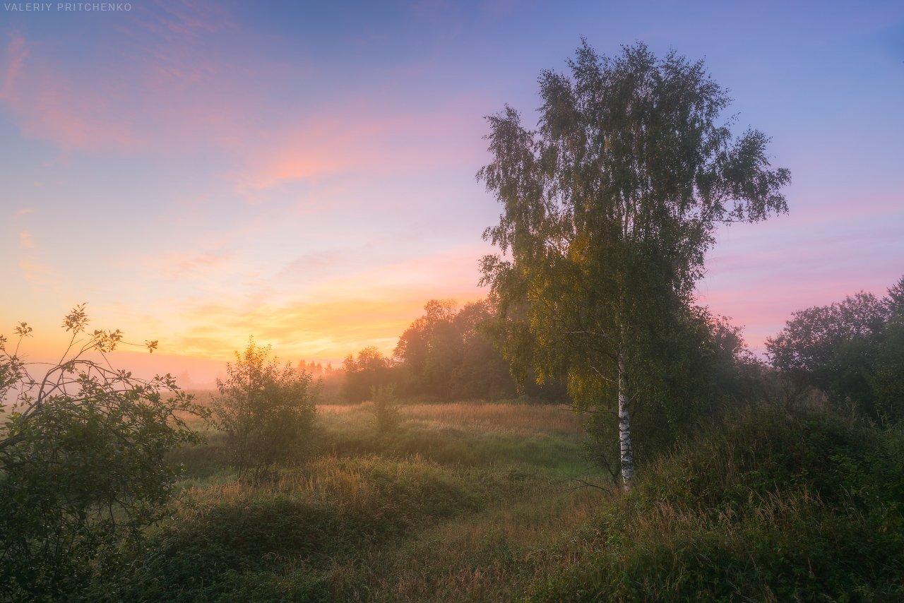 утро, рассвет, природа, пейзаж, туман, Валерий Притченко