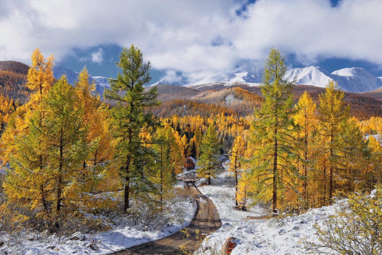 сибирь, алтай, горный алтай, осень, снег, горы, Галина Хвостенко