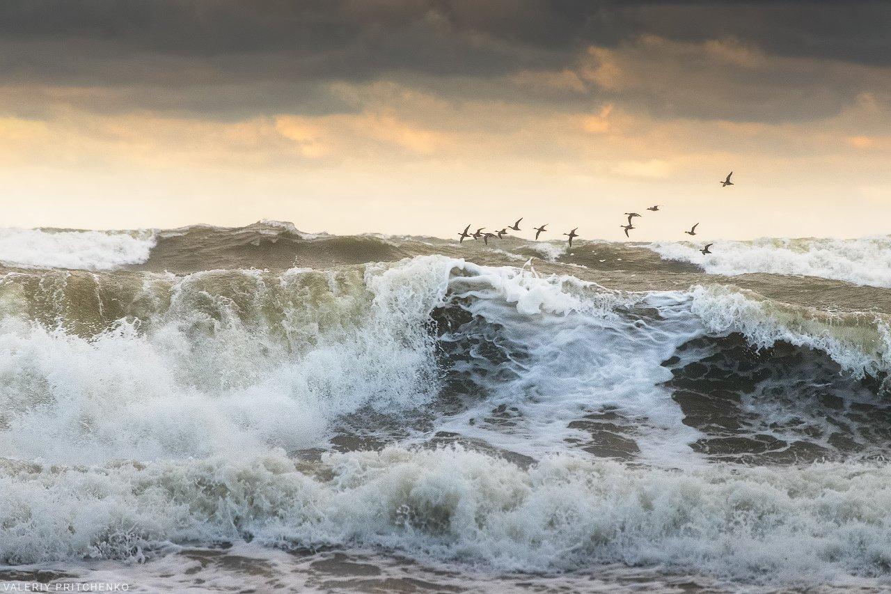 море, шторм, природа, пейзаж, sea, seascape, nature, Валерий Притченко