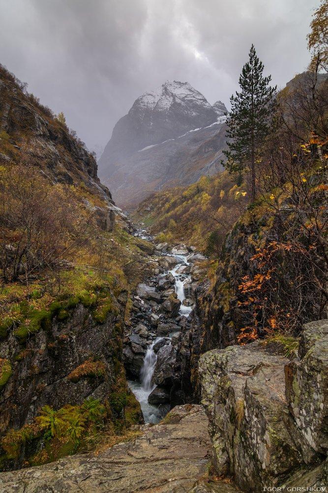 кавказ,домбай,горы,осень,лес,облака,туман,дождь,пейзаж,природа,камни,водопад,ущелье,аманауз,софруджу,скалы,снег,снегопад, Горшков Игорь