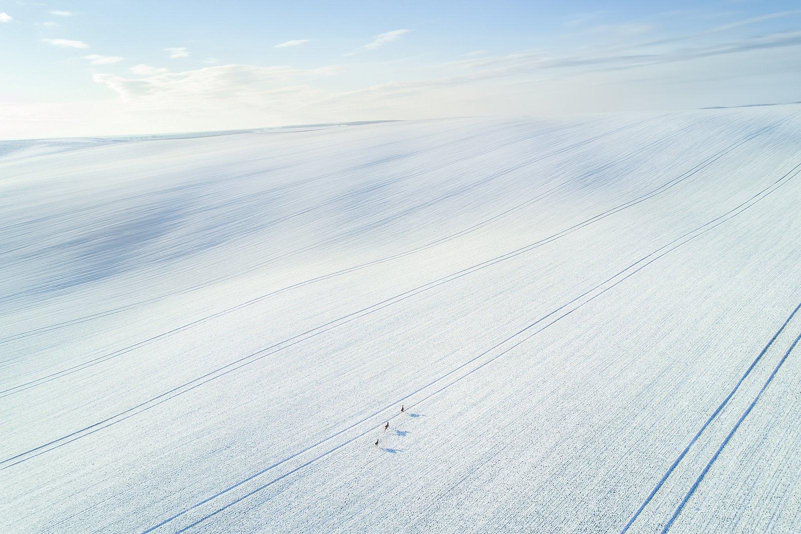 моравия, чехия, зима, Василий Яковлев