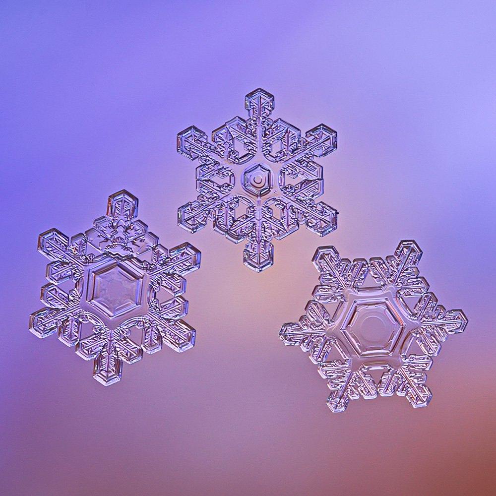 снежинка, снежинки, макро, природа, кристалл, зима, Елена Соловьёва