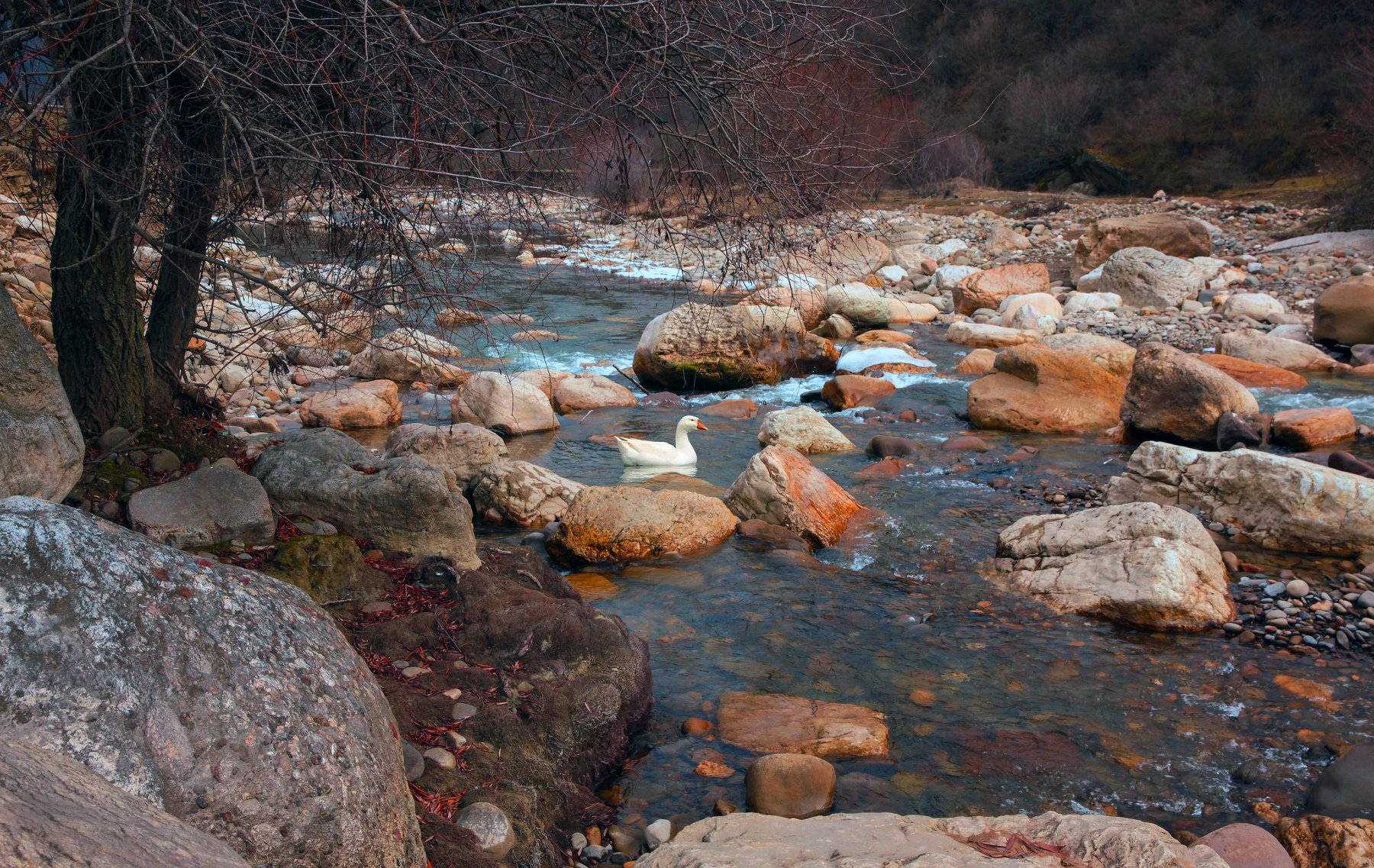 горы,осень,природа,дагестан,река,, Марат Магов