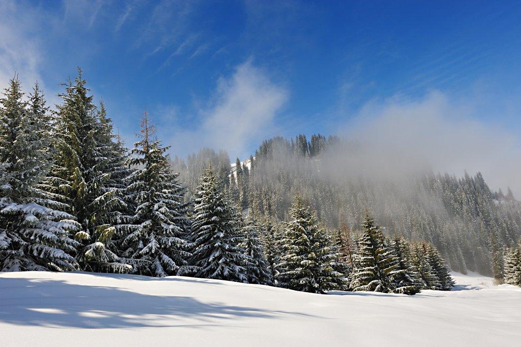 алматы, казахстан, горы, зима, Vasiliy Ganzha