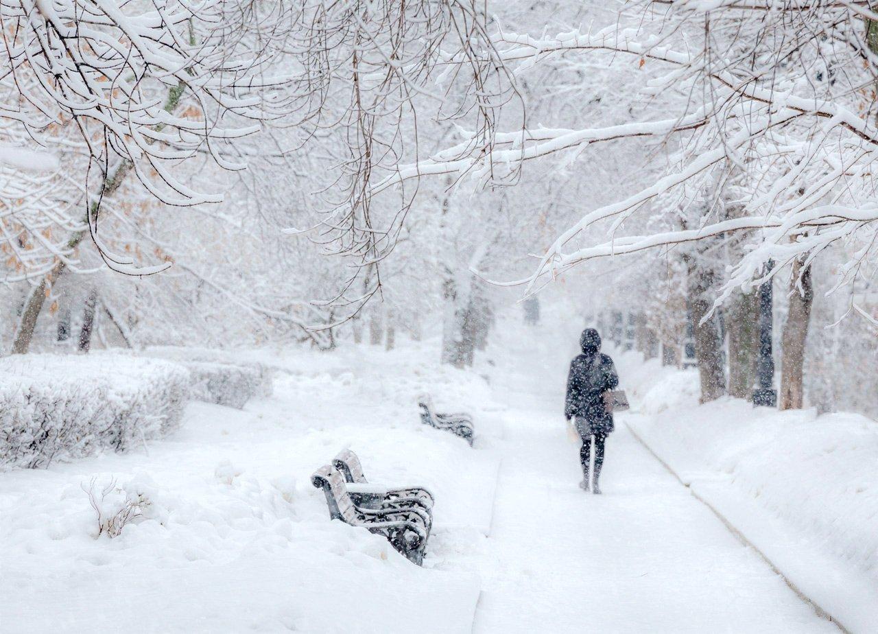 москва, зима, снегопад, бульвар, Виктор Климкин