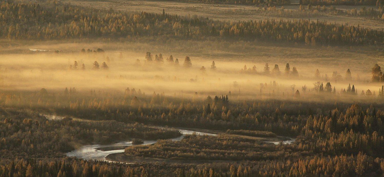 алтай, горный алтай, курайская степь, курай, утро, туман, чуя, Хвостенко Галина