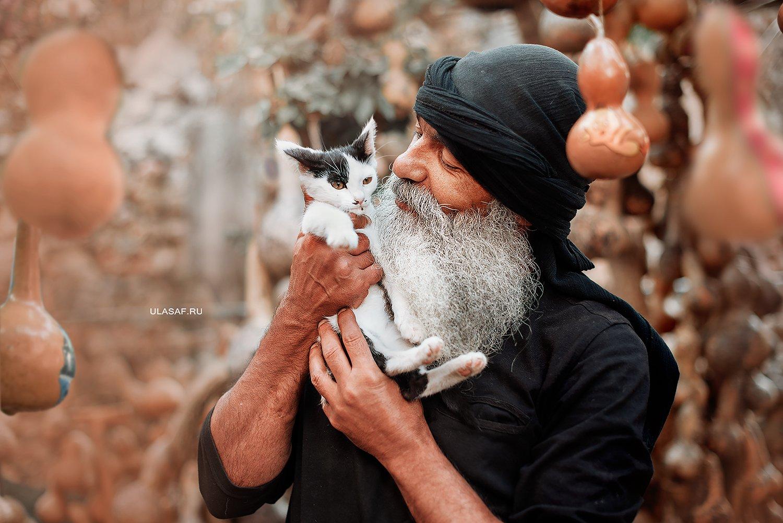 портрет, portrait, man, котенок, кошка, cat, лето, summer, любовь, love, нежность, tenderness, сказка, волшебство, Юлия Сафо