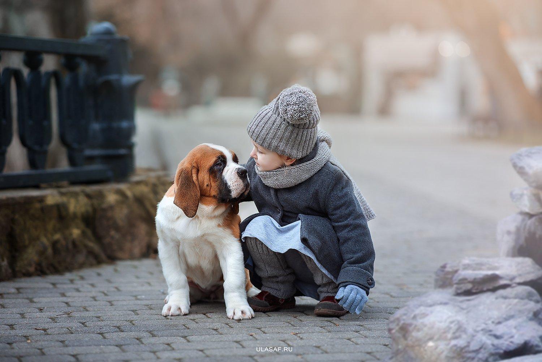портрет, зима, winter, девочка, girl, животные, собака, сенбернар, прогулка, щенок, dog, друзья, эмоции, дружба, разговор, солнышко, лучи, happy, фотосессия на природе, фото дети, детские фотографии, happiness, сказка, волшебство, Юлия Сафо