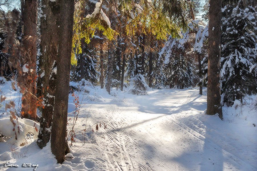 зима, природа, снег, зарисовка, етти