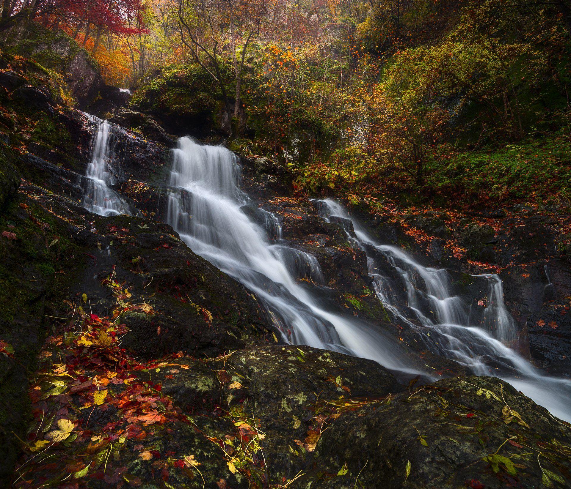 landscape nature scenery forest wood autumn river waterfall longexposure mountain vitosha bulgaria лес oсень, Александров Александър