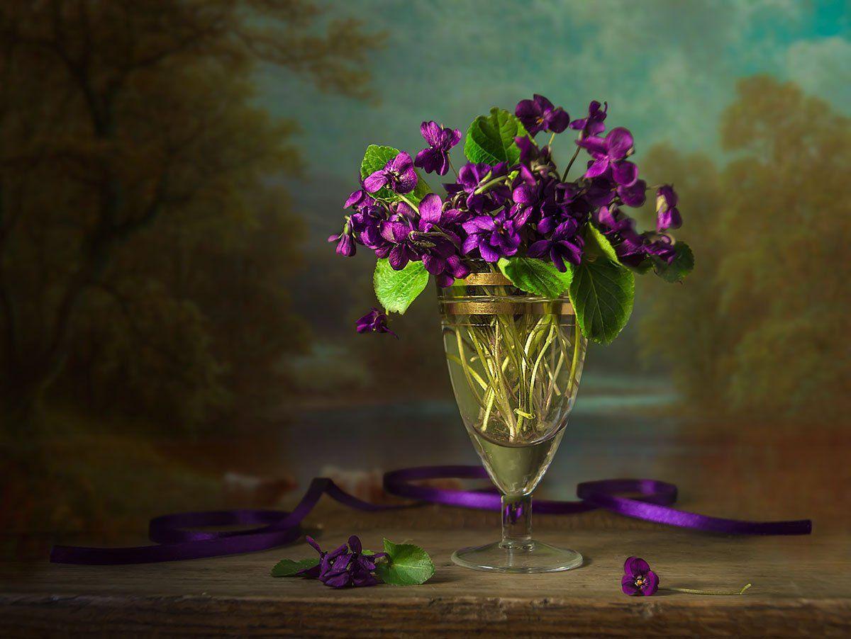 натюрморт с фиалками,весенние цветы,букет,художественное фото,искусство., Костюченко Людмила