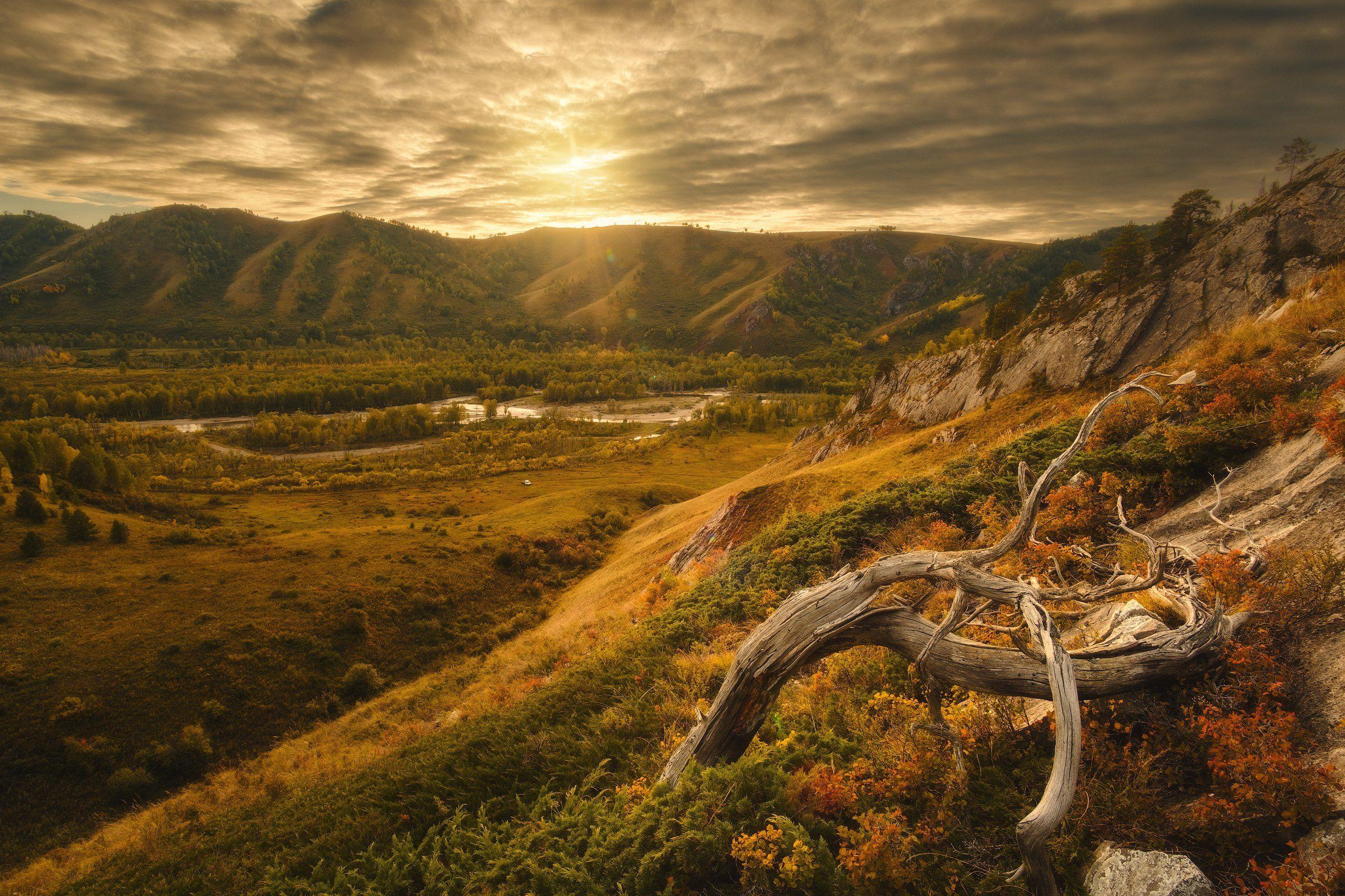 россия, алтай, алтайский край, тигирек, сибирь, осень, природа, пейзаж, горы, хребет, лесостепь, закат,  заповедник, Оборотов Алексей