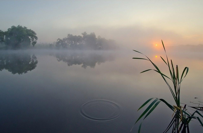 утро, рассвет, пейзаж, большие байдики, Михаил Агеев