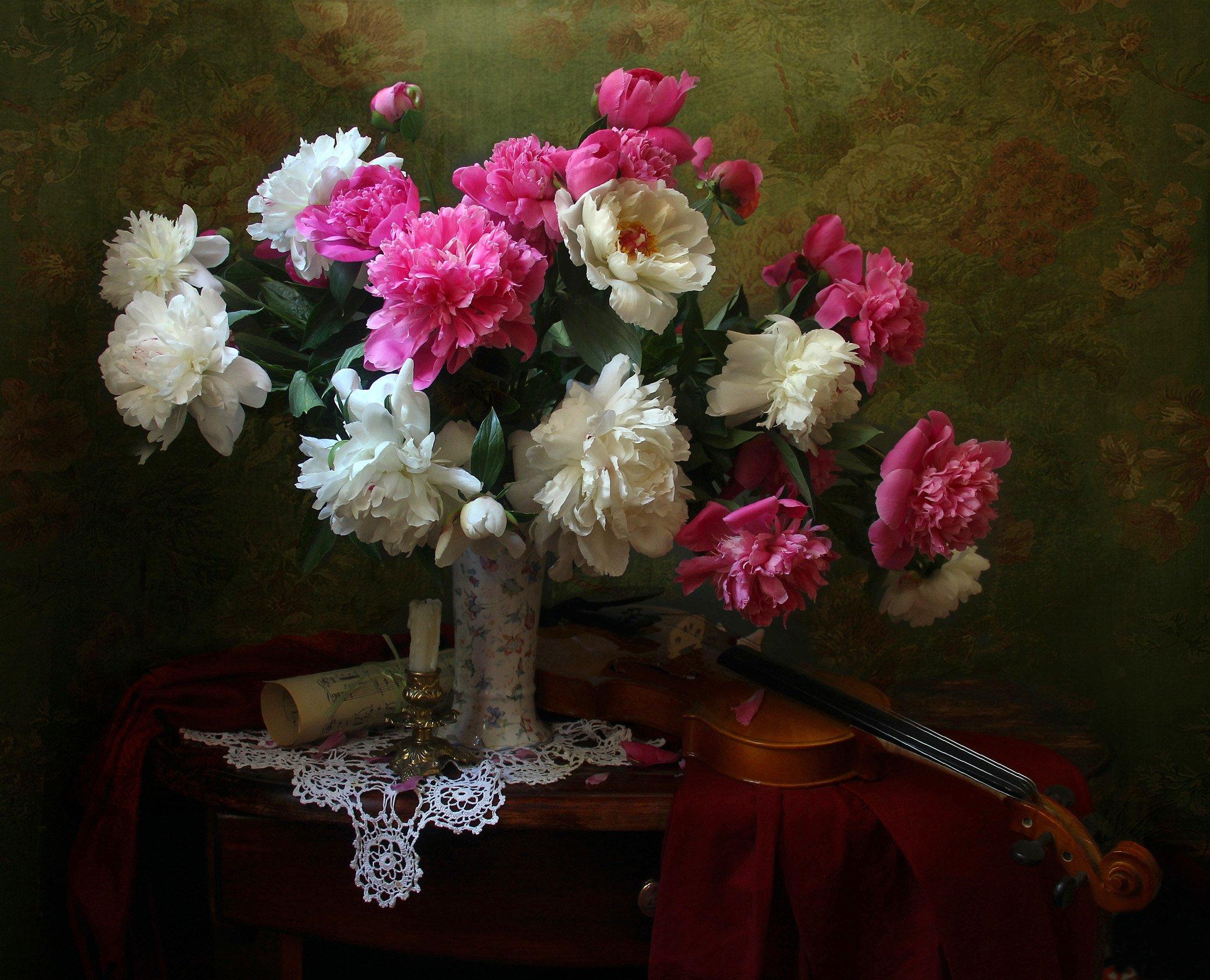 натюрморт, букет цветов, пионы, скрипка, марина филатова, Филатова Марина