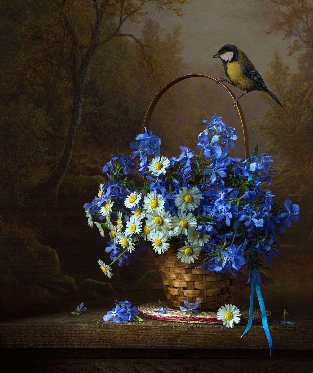 Синичка с весенними флоксами.