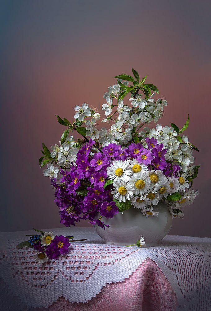 натюрморт с примулами,весенний букет,цветы,художественное фото,искусство., Костюченко Людмила