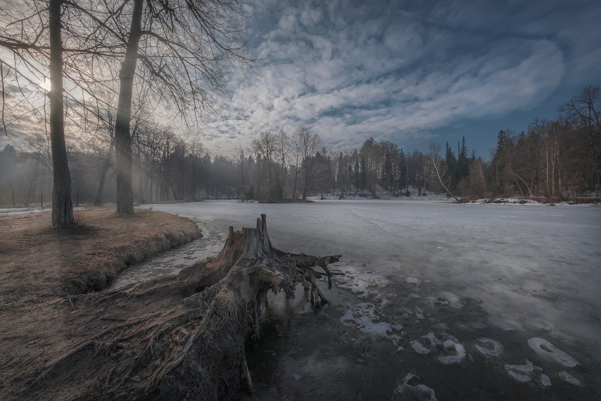 середниково, барский, пруд, утро, туман, солнце, рассвет, деревья, весна, апрель, Андрей Чиж
