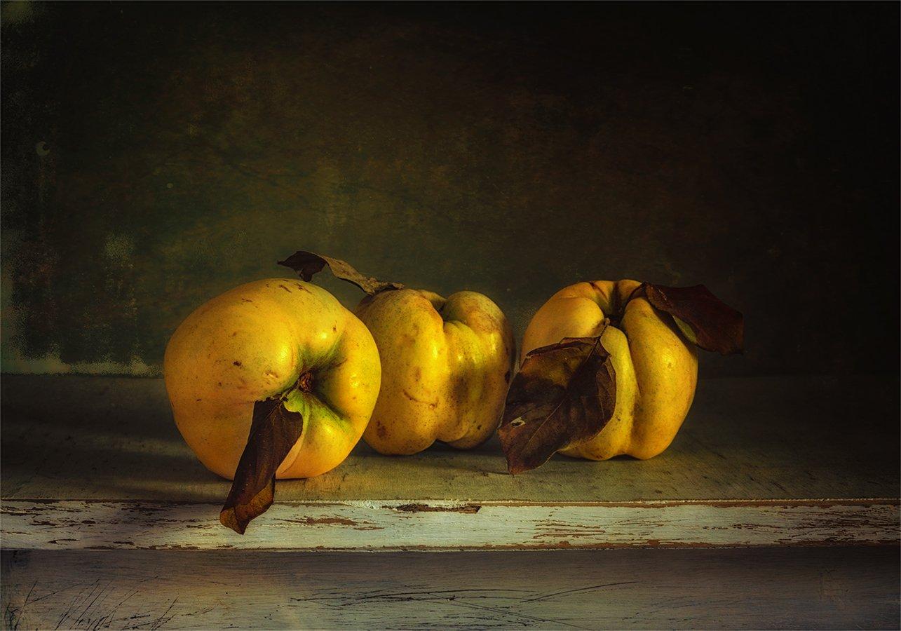 still life, натюрморт,    винтаж,   еда,  спелый, вкусный,  свет,  тень,  фрукты, алыча, Шерман Михаил