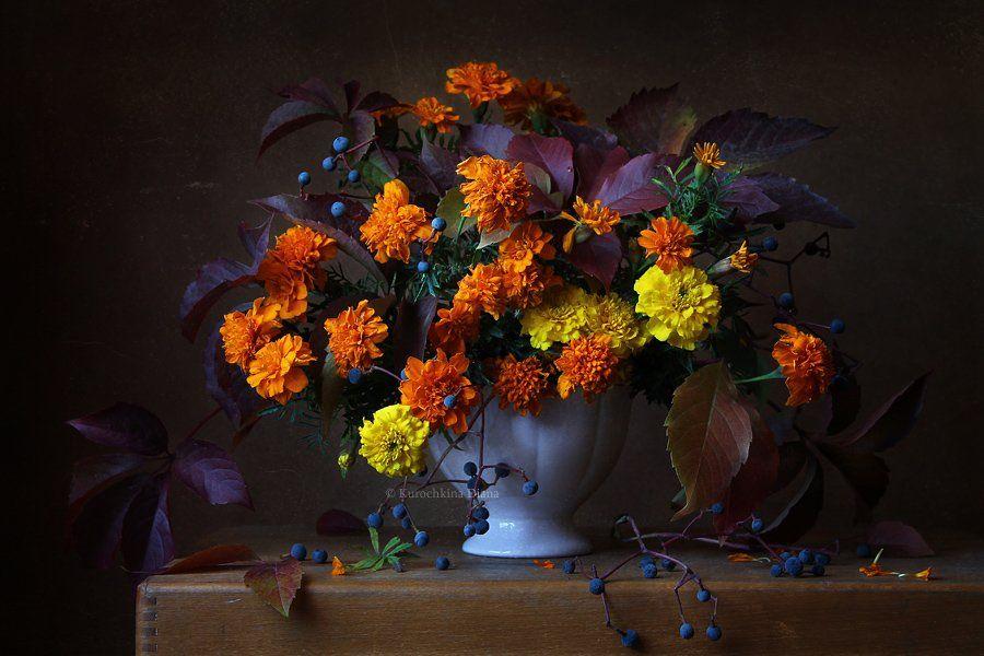натюрморт, цветы, бархатцы, осень, букет, девичий виноград, Курочкина Диана
