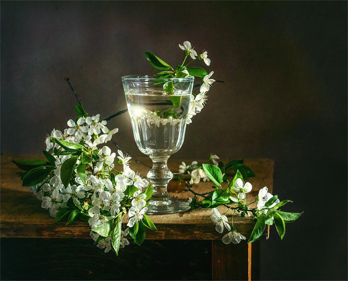 still life, натюрморт,    винтаж,    цветы, ветка, бокал, весна,, Шерман Михаил