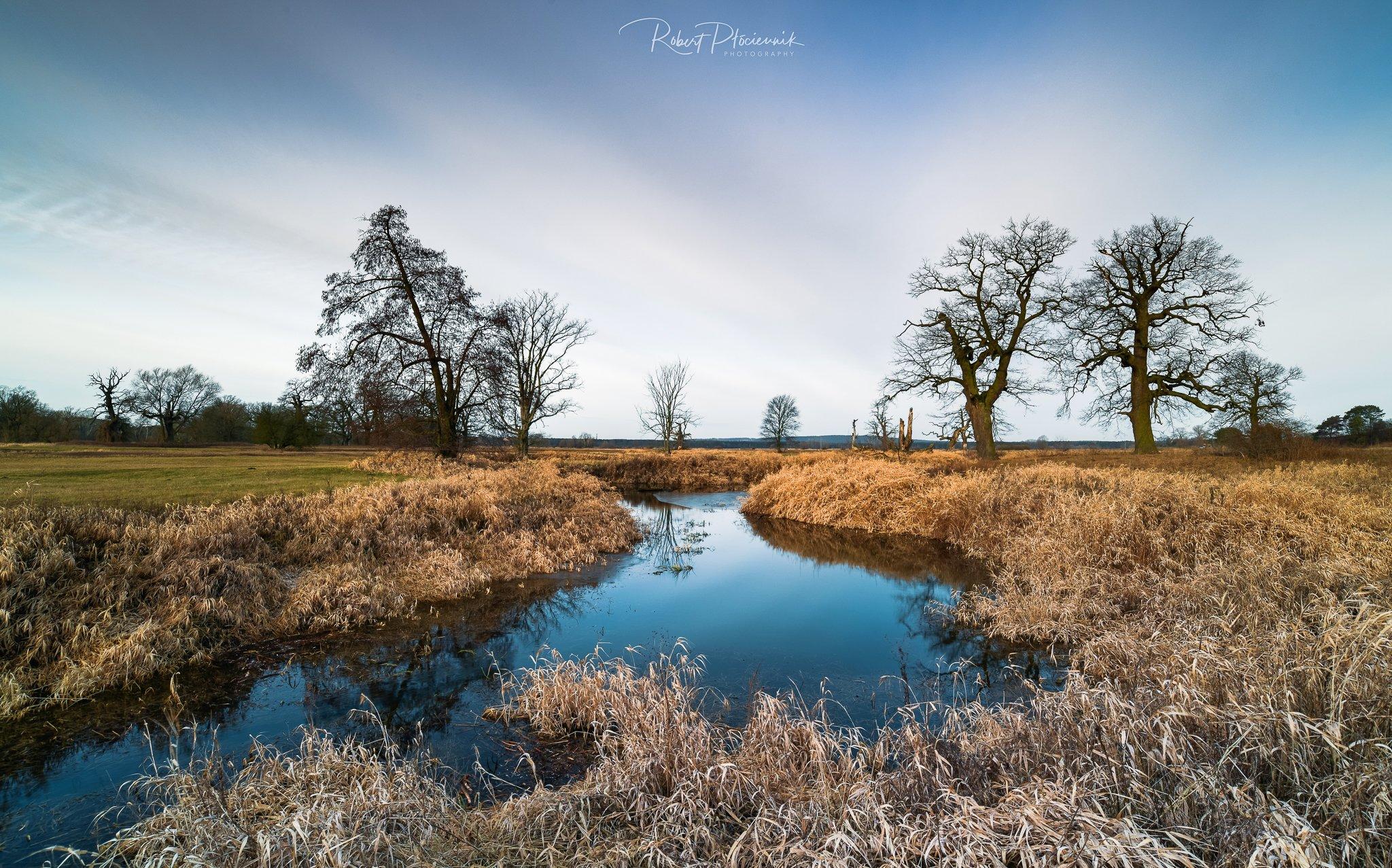 landscape, trees, morning, sky, clouds, nature, Płóciennik Robert