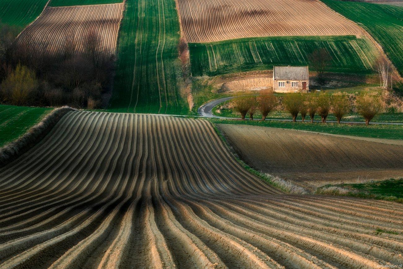ponidzie, poland, house, fields, spring, Jakub