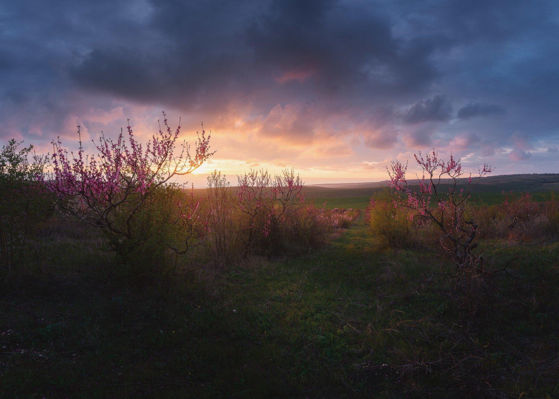 , Feofanov Oleg