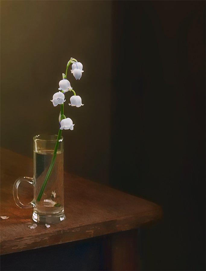 still life, натюрморт,    винтаж,    цветы, ландыши , свет, тень, минимализм, Шерман Михаил