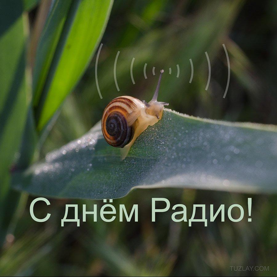 день, радио, Владимир Тузлай