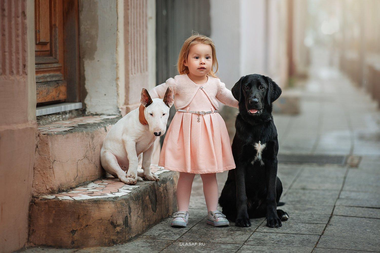 грузия, georgia, тбилиси, tbilisi, портрет, весна, spring, ребенок, дети, прогулка, фотосессия на природе, девочка, girl, животное, собака, dog, фото дети, детские фотографии, радость, малыш, друзья, happy, фотопрогулка, любовь, love, бультерьер, лабрадор, Юлия Сафо