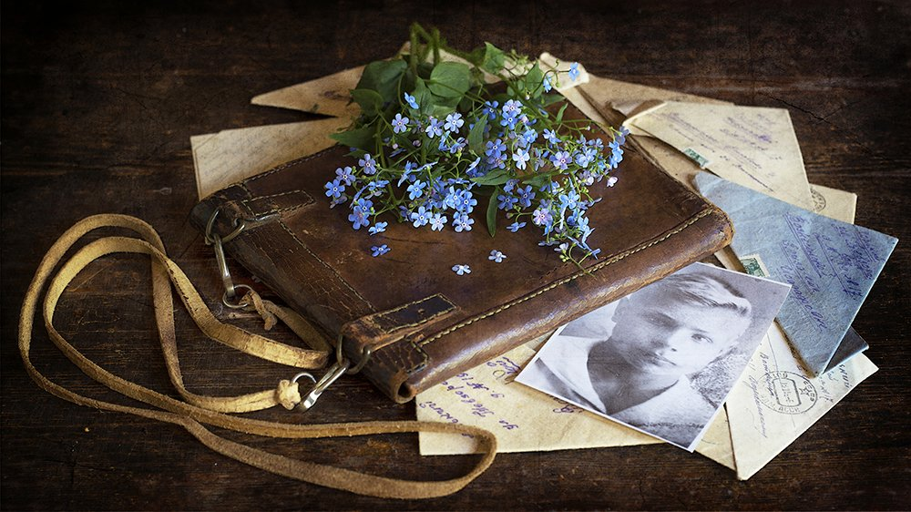 фронтовой планшет, письма, фото, незабудки, Марина Кулакова