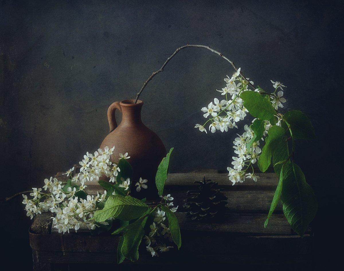 натюрморт,черемуха,цветы,весна, Наталия К