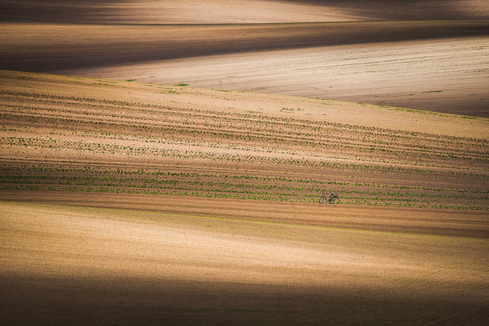 south moravia, czech, fields, spring, bike, Калин Панчев