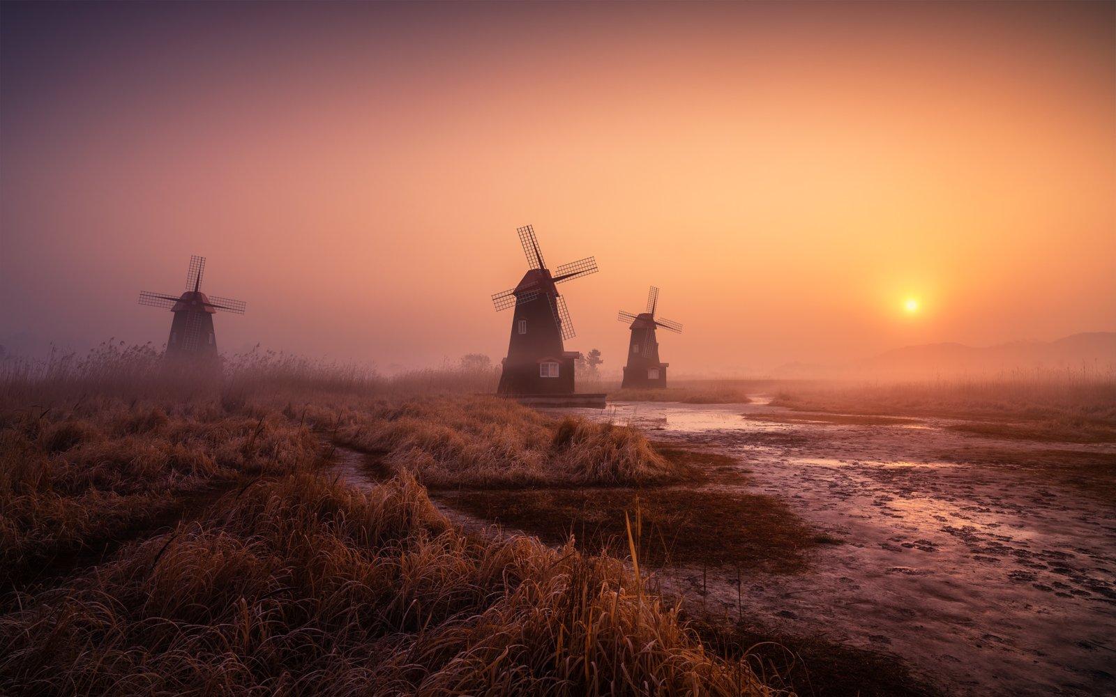 windmill calm morning fog foggy light landscape korea, Tiger Seo
