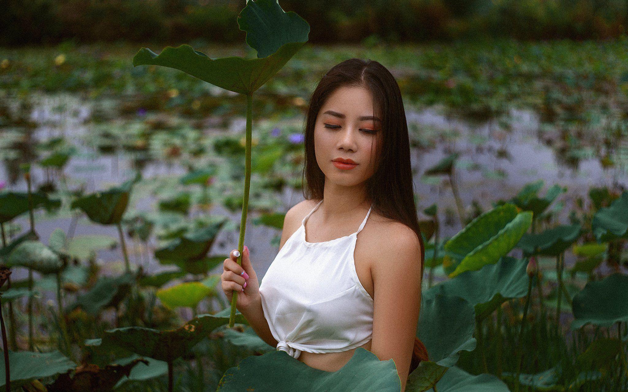 , Nguyen lee