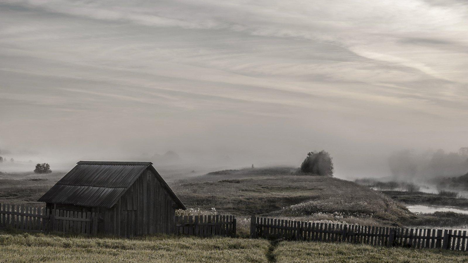 вологодская область, река вожега, деревня коневка,утро, туман, Vershinina Valentina