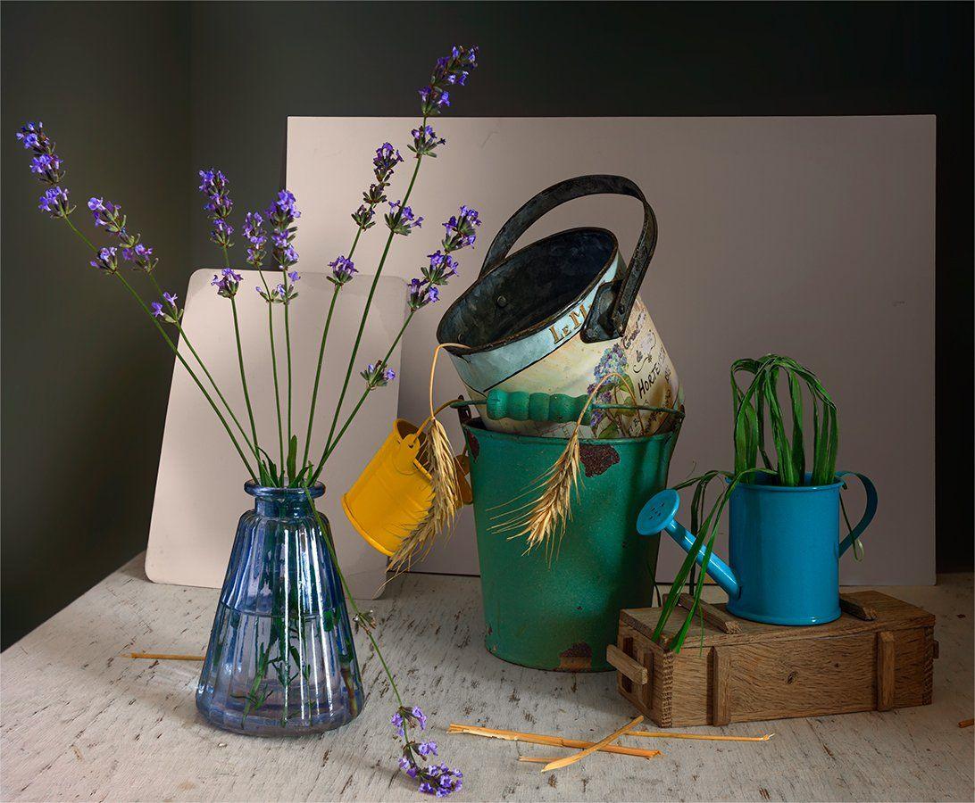 still life, натюрморт, винтаж, ретро, цветы, лаванда, ведерки, лейка, коробка, Шерман Михаил