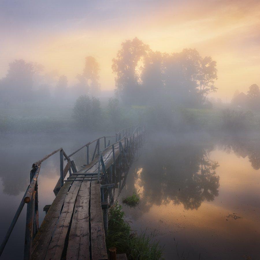 туман, лето, мост, Дмитрий Медянцев