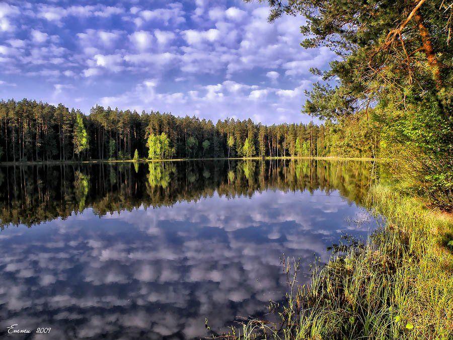 природа, утро, озеро, весна, тишина, подмосковье, етти