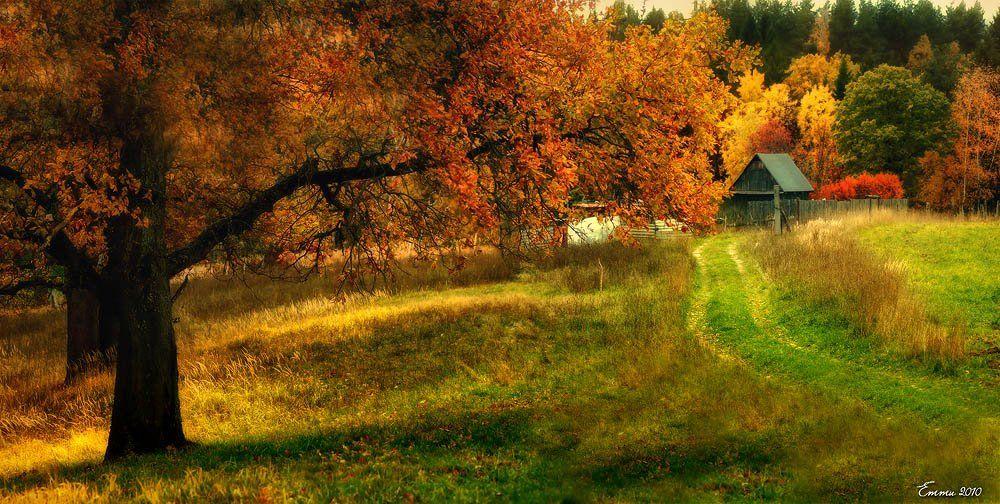 природа, деревня, осень, етти