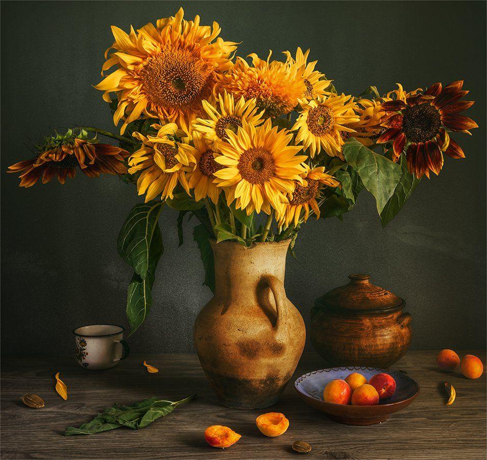 still life, натюрморт,    винтаж,    цветы,  подсолнух, лепесток, букет, абрикосы, еда, спелый, ретро, чашка,, Шерман Михаил