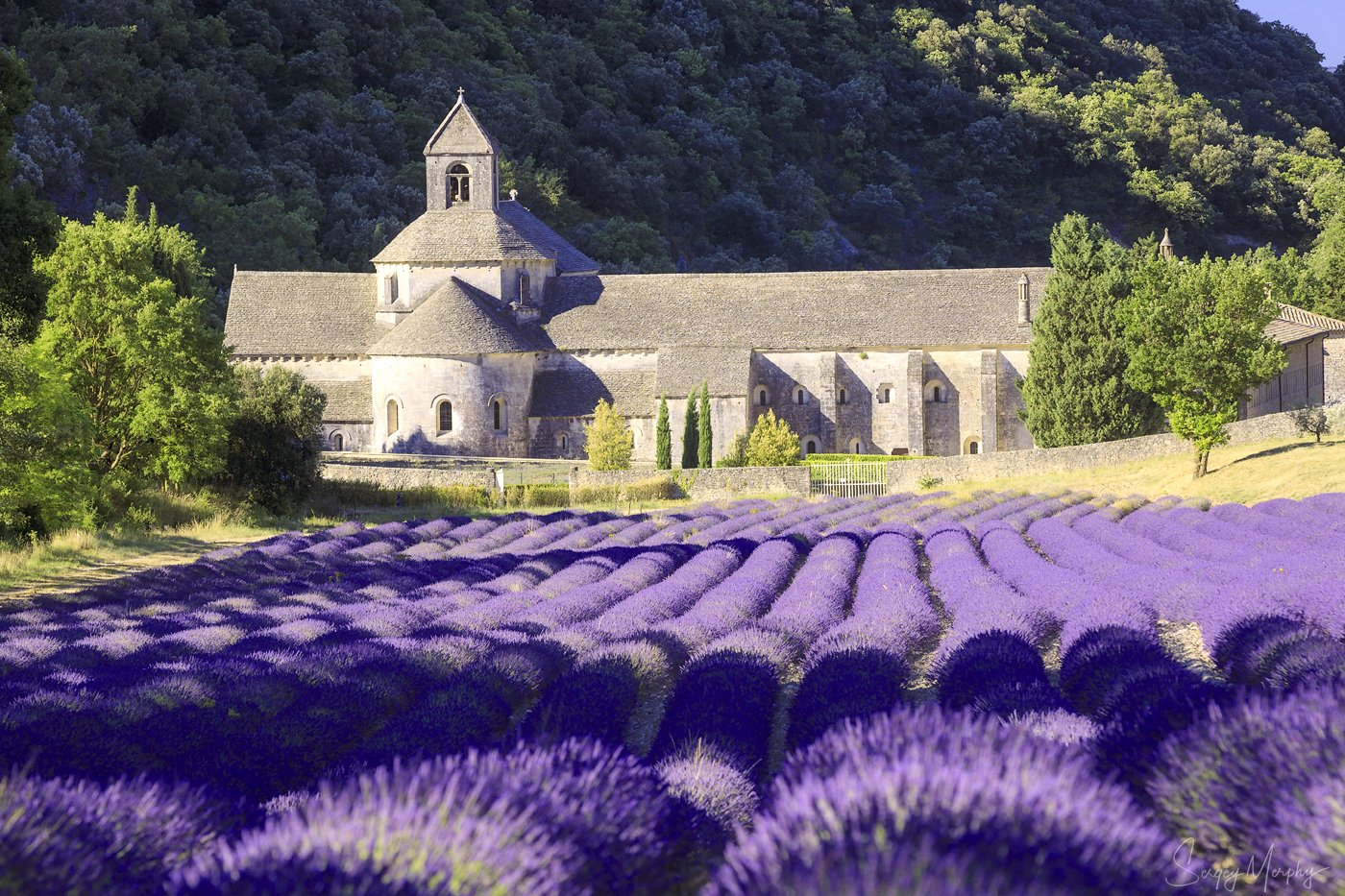 abbaye norte-dame de senanque. provence., Merphy Sergey