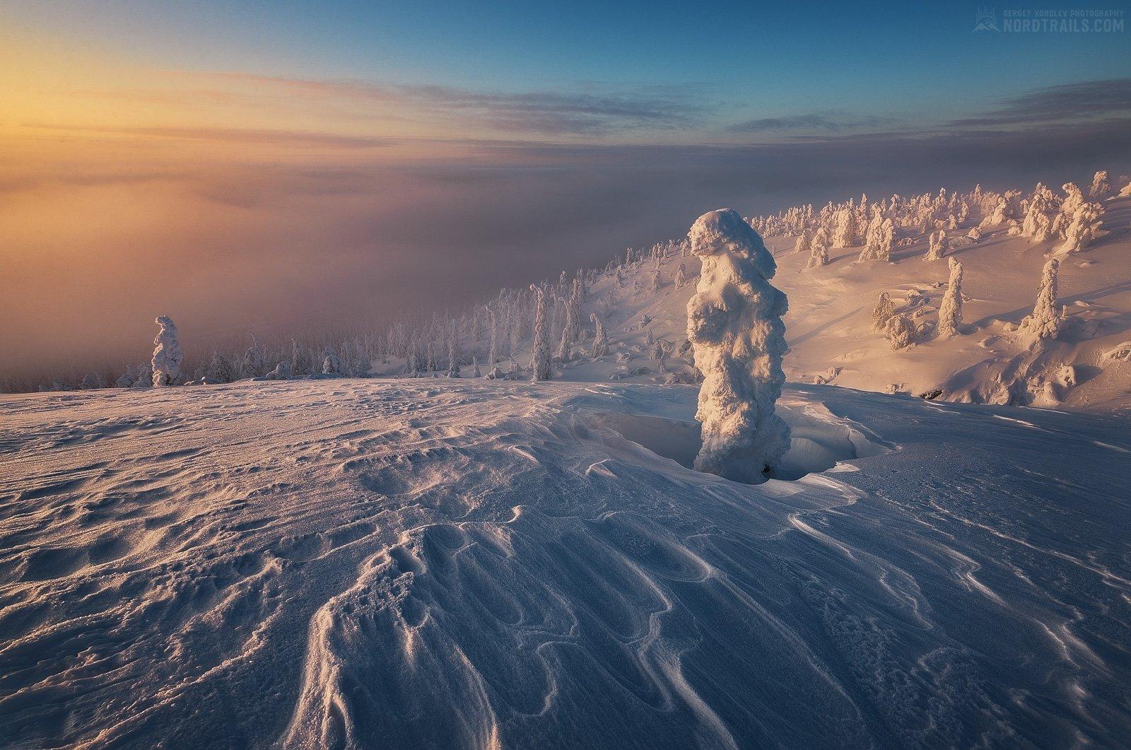 кольский, кольский полуостров, кандалакша, зима, winter, snow, north, Королев Сергей