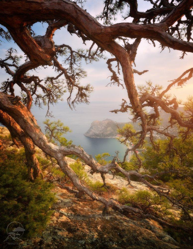 пейзаж, природа, море, горы, крым, новый свет, Гордиенко Анатолий