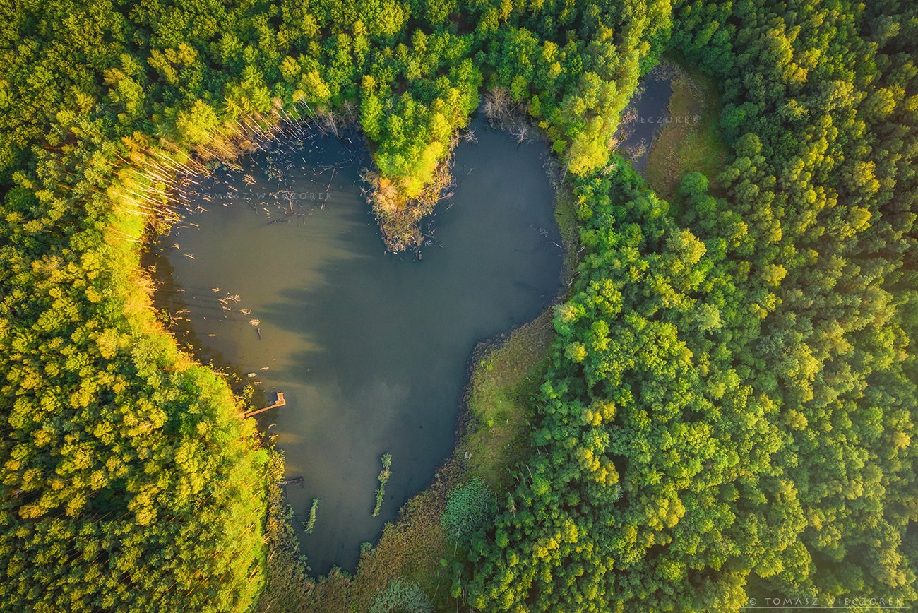 drone, dji, air, poland, polish, landscape, sunrise, sunset, colours, summer, awesome, amazing, adventure, travel, beautiful, morning, lake, pond, heart, love, Tomasz Wieczorek