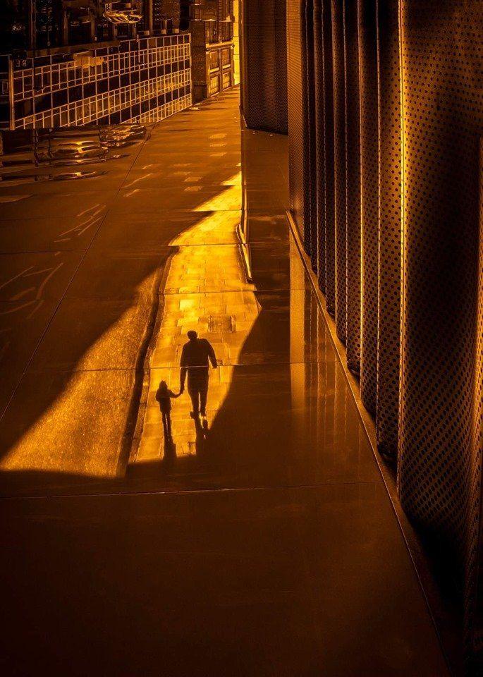 street, Ovidiu Selaru
