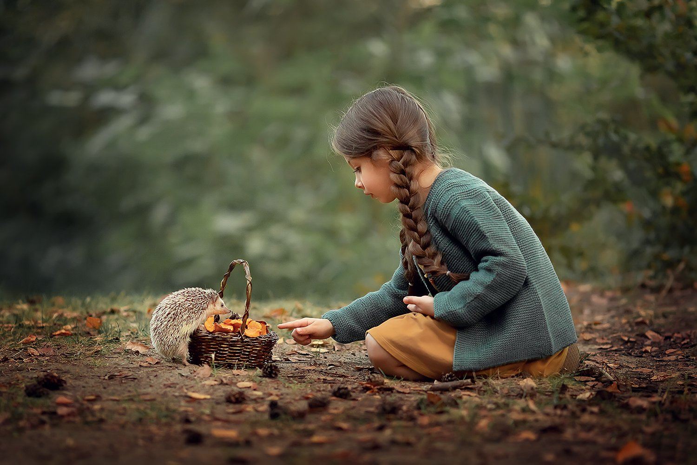 ёжик лес грибы девочка лесная история, Екатерина Белоножкина