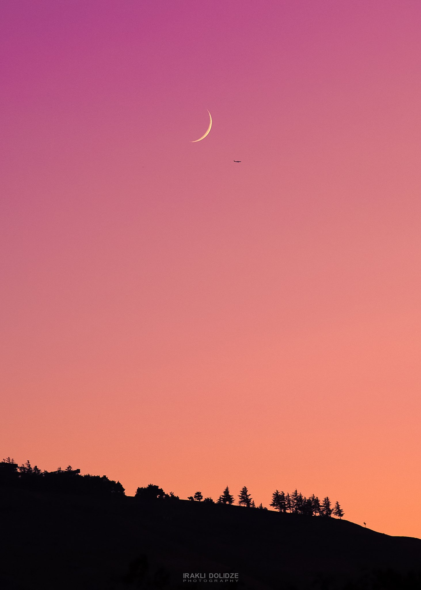 moon, plane, landscape, sunset, trees, violet, color,, ირაკლი დოლიძე