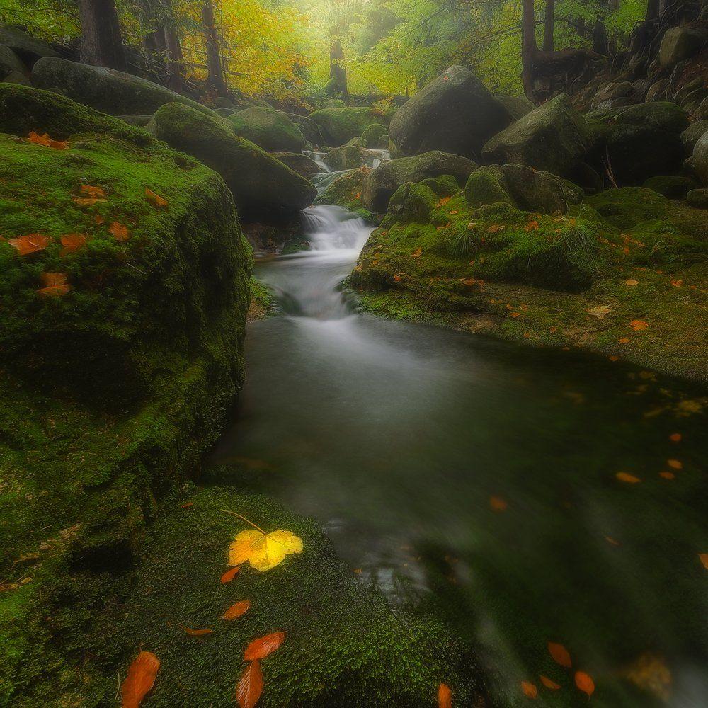 landscape,canon,mist,light,autumn,waterfall, Iza i Darek Mitręga